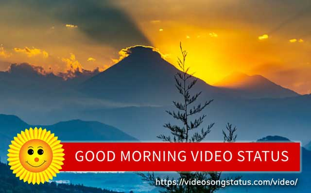 good mornings videos download