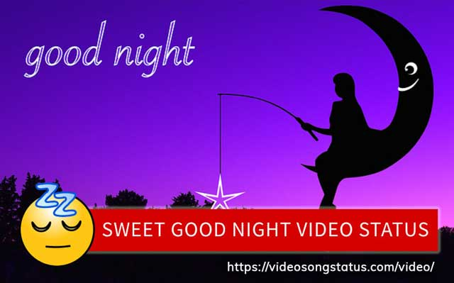 Best Good Night Status Videoshindi Shayri Download For