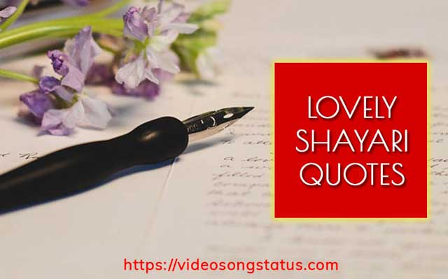 Sher O shayri - Hindi shayri for lovers | video song status