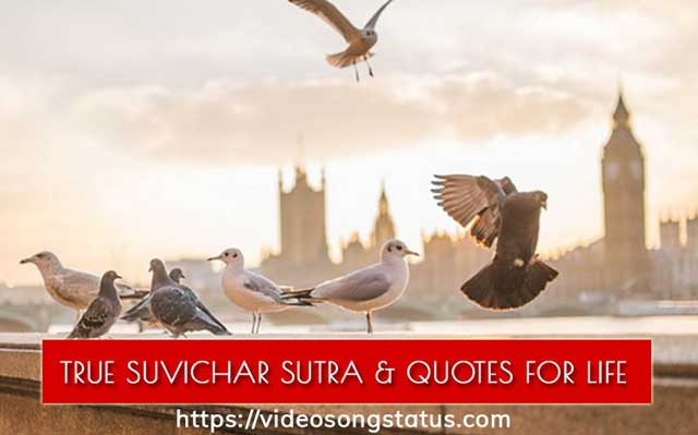 Best Suvichar Quotes for Morning Motivational Images | video song status