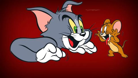 Tera Yaar Hoon Main Cute Friendship Status Video Tom N Jerry