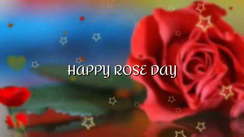 Happy Rose Day In Hindi Lovely Rose Day Special Whatsapp Status Video