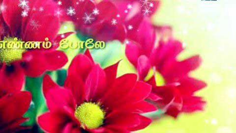 Tamil - Love Status Status Video 2019