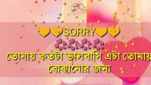 Bengali Sad Sorry Status Download