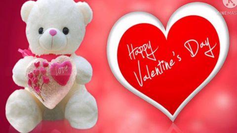 Love Trust Care Happy Valentines Day Status Video