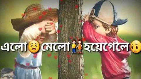 Bengali Status Video