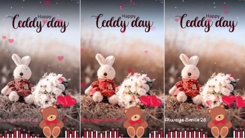 Always Smile Happy Teddy Special Whatsapp Status Video Download