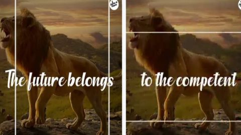 Lion Motivational Whatsapp Status Video Free Download