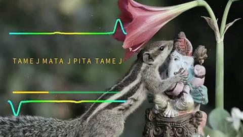 Tamej Mata Pitaj Tamev Happy Ganesh Chaturthi Status