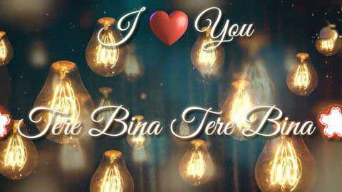 Tere Bina Hindi Status Video Song