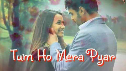 Tum Ho Mera Pyaar 30 Second Status Download