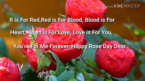 Best Rose Day Special Video Whatsapp Status In Hindi Message