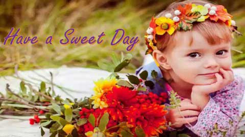 Good Morning Wishes Have A Sweet Day Status