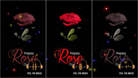 Hey Shona Rose Day Status Video Download Free