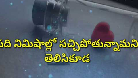 55+ Telugu Status Video for Whatsapp | Romantic Video song status