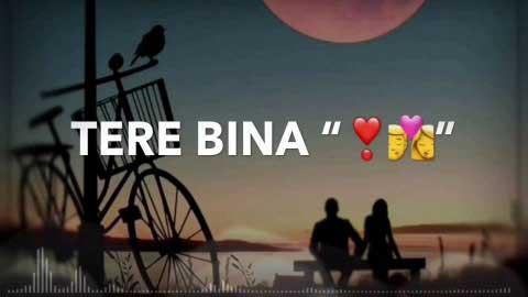 Humnava Mere Sad Status About Life Relation