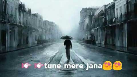 Tune Mere Jaana Sad Whatsapp Video Status Download