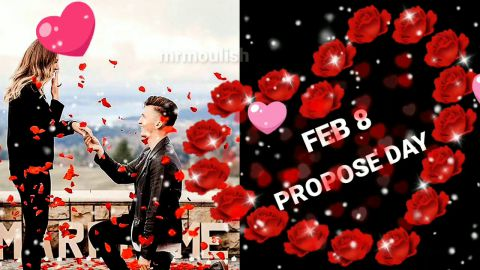 February 8 Propose Day Status Video For Boyfriend And Girlfriend