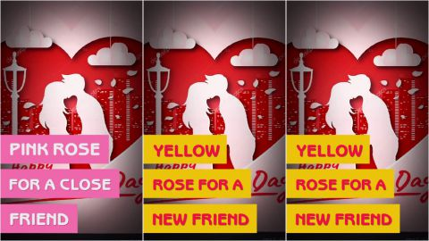 Rose Day Asking Message Video Status Download