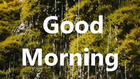 Good Morning Whatsapp Status Video