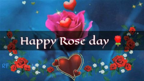 Rose Day Special Shayari Happy Rose Day Status 2021