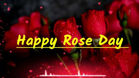 Most Lovely Hindi Rose Day Shayari Status For Love Shayari 2 Lines