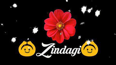 Zindagi Do Pal Ki Video For Status In Whatsapp Download