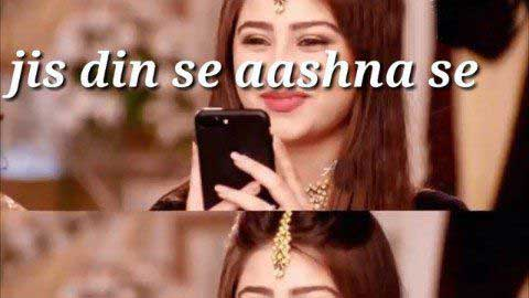 Jis Din Se Aashna Se Sad Love Whatsapp Video Status
