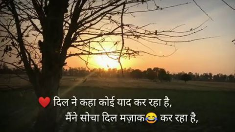 Good Morning Shayari Wishes Quotes In Hindi Video
