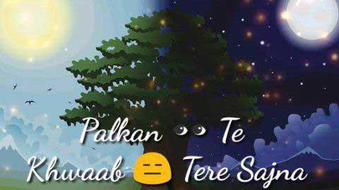 Palkan Te Khwab Tere Sajna Whatsapp Status Punjabi