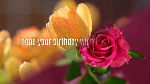 Happy Birthday My Love Status Video