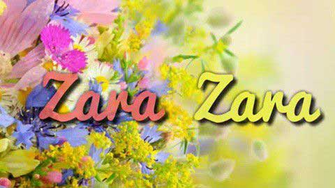 Zara Zara Bahekta Hai Very Sad Status Video Download