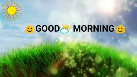Good Morning Video For Whatsapp Status
