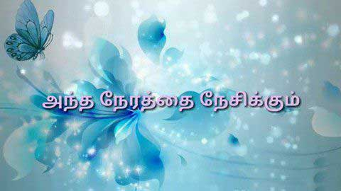 Tamil Cute Love Status Status Video Hd