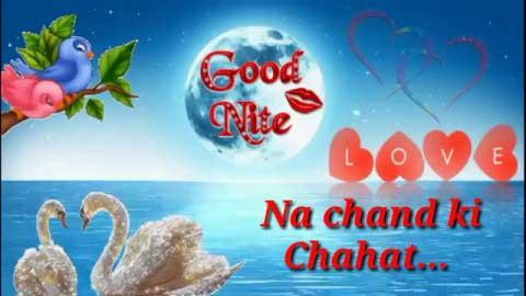 Good Night Love Whatsapp Status Video Shayari Download