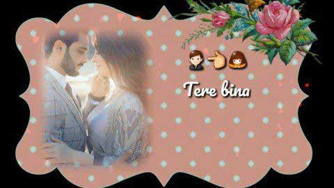 Tere Bina Tere Bina - Video status for whatsapp love song