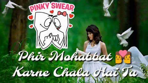 Phir Mohabbat Karne Chala Hai Tu